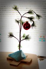 Tiny pine with red Christmas ball